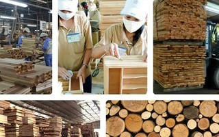 COVID-19 fallout reverberates around Vietnam's wood industry