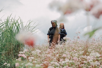 impressive flower photo collection across vietnam from a fresh photographer