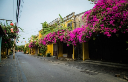 Hoi An boasts unexpected charm during COVID-19 lockdown