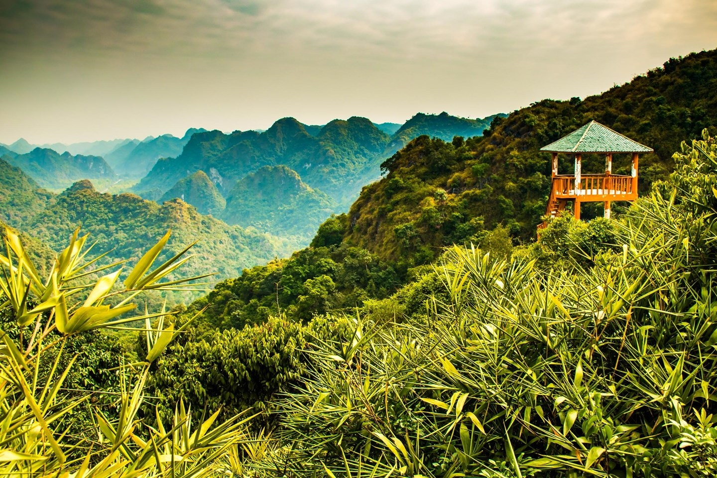 wanderlust lists out 12 must do things in vietnam