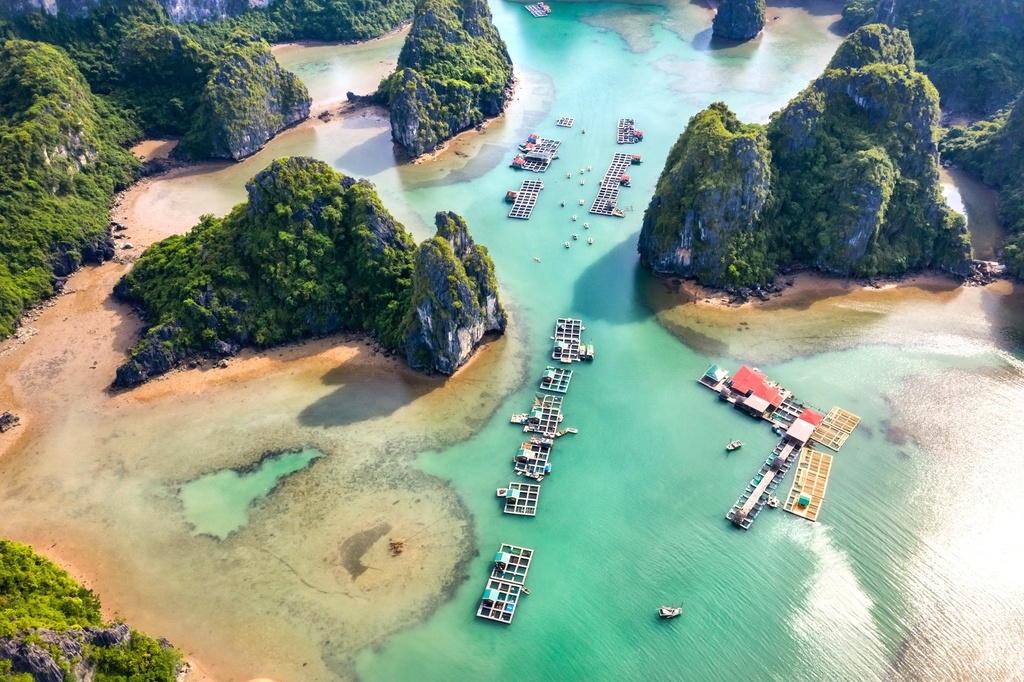 mesmerizing bays in vietnam to draw tourists