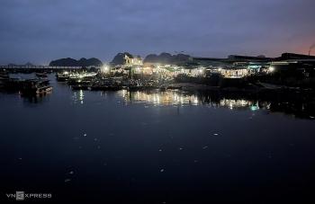 Vibrant nightlife at fish market in Bai Tu Long Bay