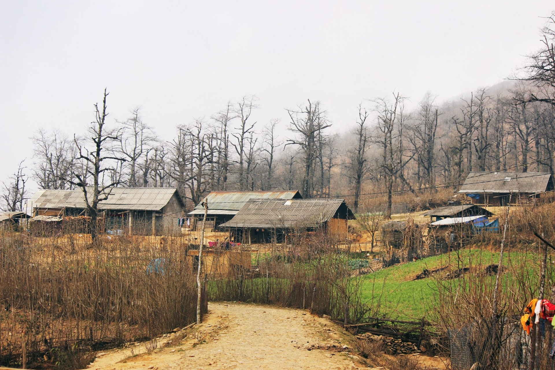 the year round magic of y ty village