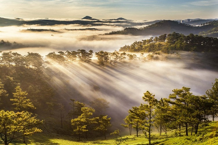 da lat in sea of clouds a must visit hidden gem