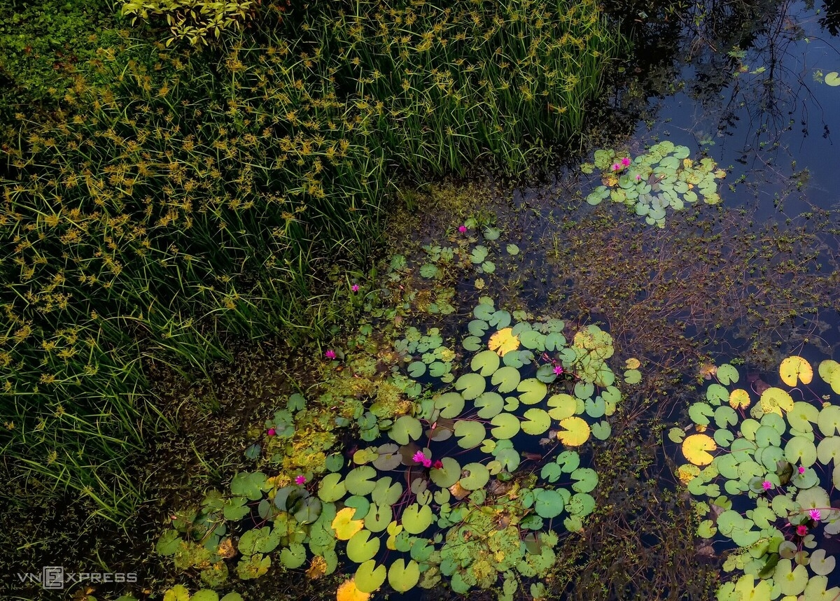 Water lily lagoon at the foot of Eo Gio pass