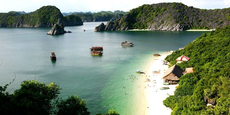 leonardo dicaprio calls for protection of vietnams lan ha bay