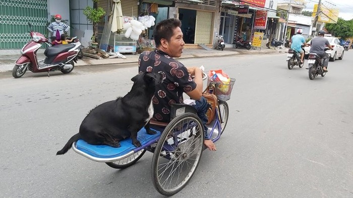 dog with lottery tickets on mouth helps handicapped owner earn a livelihood