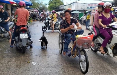 Dog helps Vietnamese handicapped owner sell lottery ticket, pick up charitable rice