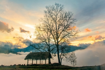 alluring seas of clouds in y ty commune northern vietnam