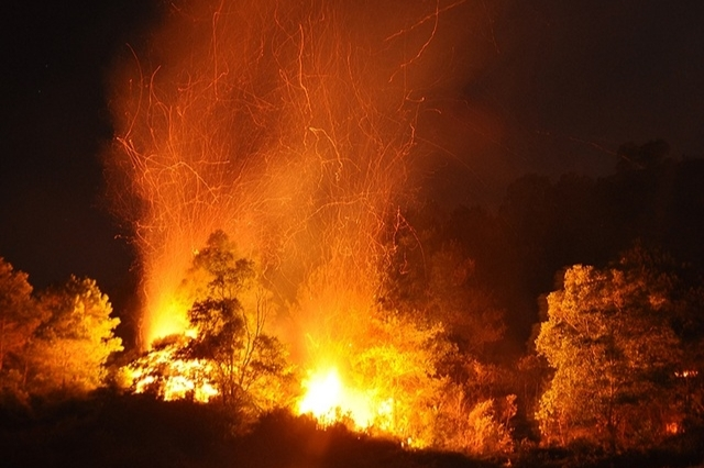 Fire engulfs forests in Nghe An, Ha Tinh provinces
