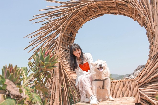 Ideal dog-themed café in Da Lat for pet lovers
