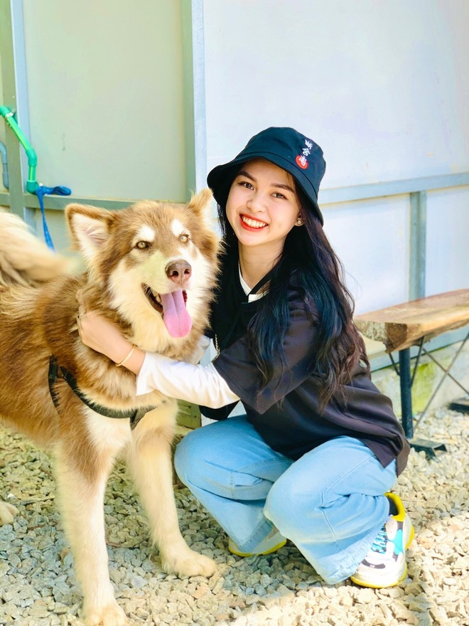 ideal dog themed cafe in da lat for pet lovers