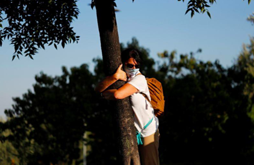 israeli urged to hug trees to beat the coronavirus blues