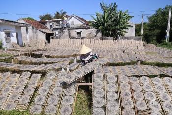 rice paper making under burning sun in central vietnam