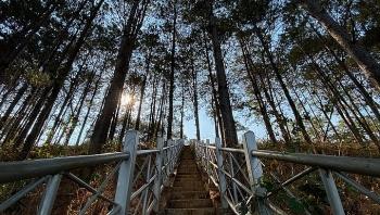 top vietnam destinations glamorous pleiku in the eyes of avid travel loner