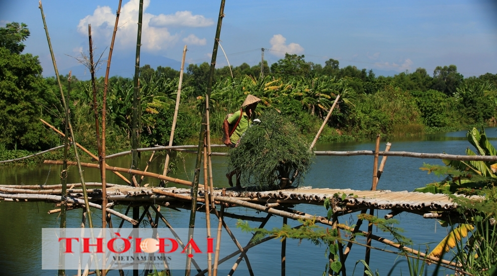 A Wooden Relic: Stepping onto Central Quang Nam's Bamboo Bridge