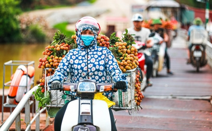 Vietnamese exporters turn to domestic market amid Covid-19 pandemic