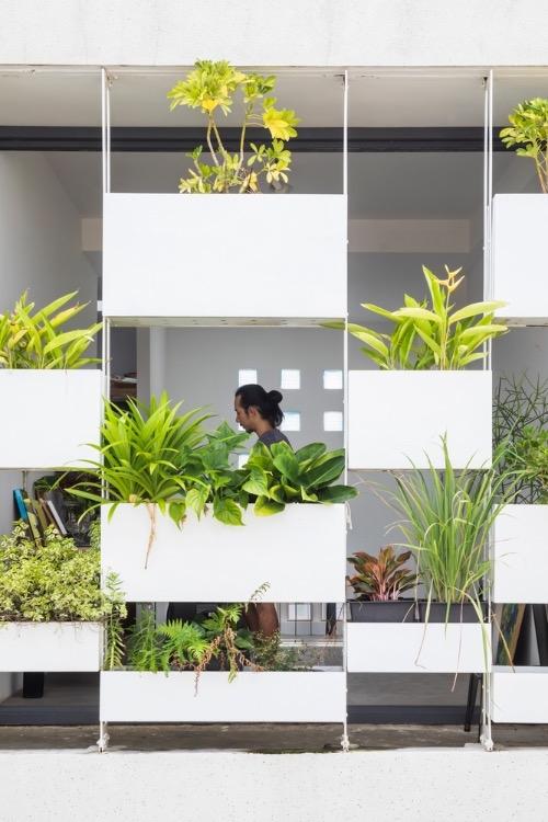 stylish vertical garden shields west facing house from baking sun