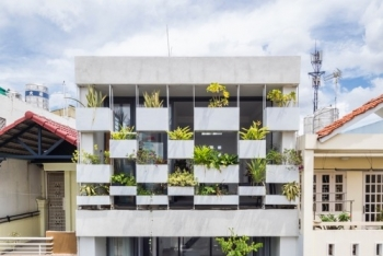stylish vertical garden shields west facing house from baking sun