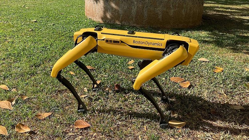 Dog-like Robot Sparks Debate in the US
