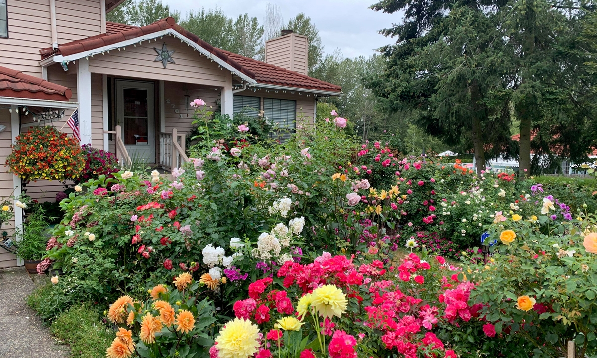 Lien's colorful flower garden at the facade of her house