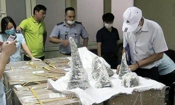 Prosecuting a man smuggling 126kg rhino horns from Dubai to Vietnam