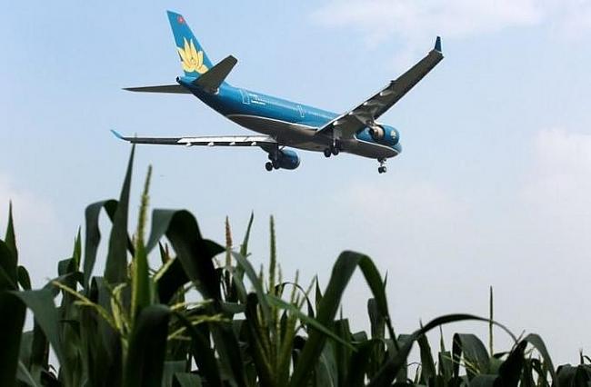 Vietnam yet to resume international flights
