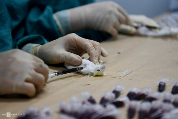 vietnam to order covid 19 vaccines from the us uk and russia