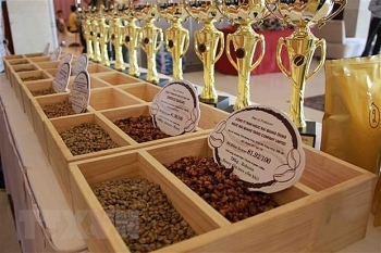 vietnam becomes japans leading coffee supplier