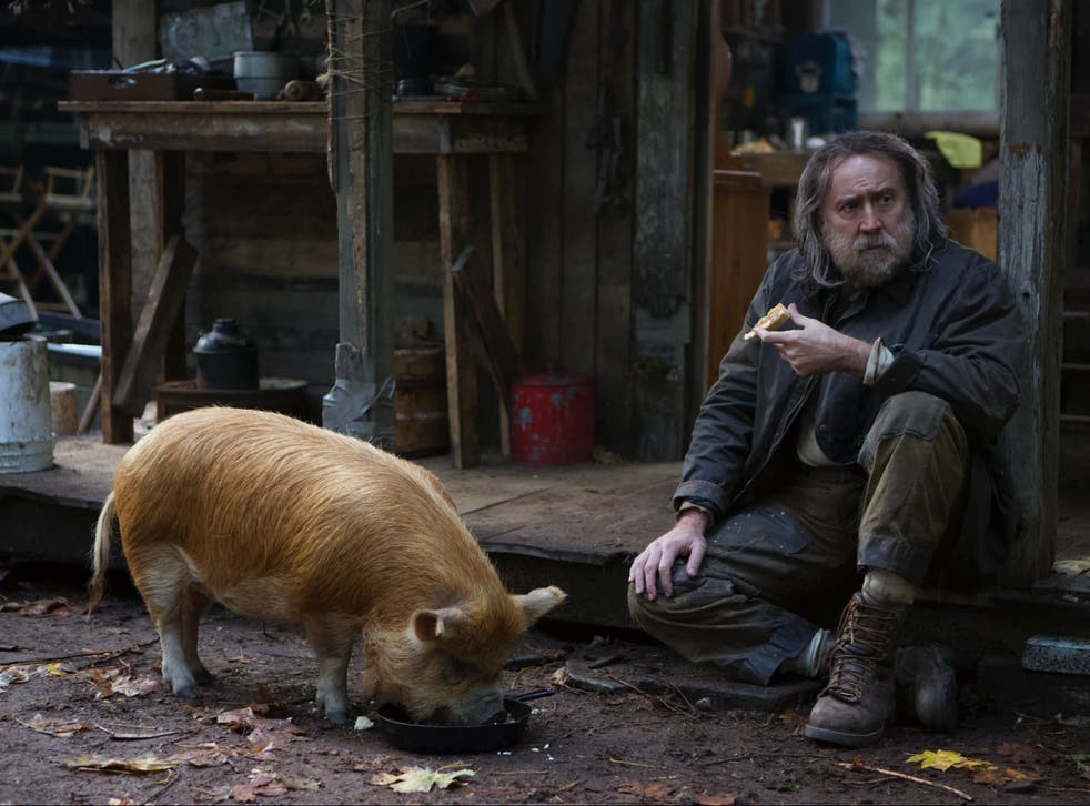 Top Must-see Films in 2021 for Bigne Watchers