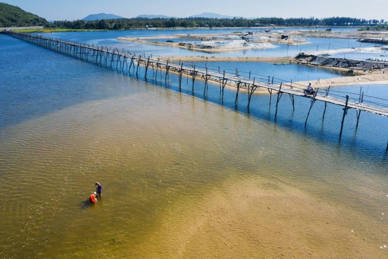 Ong Cop Bridge, Longest Wooden Bridge in Vietnam
