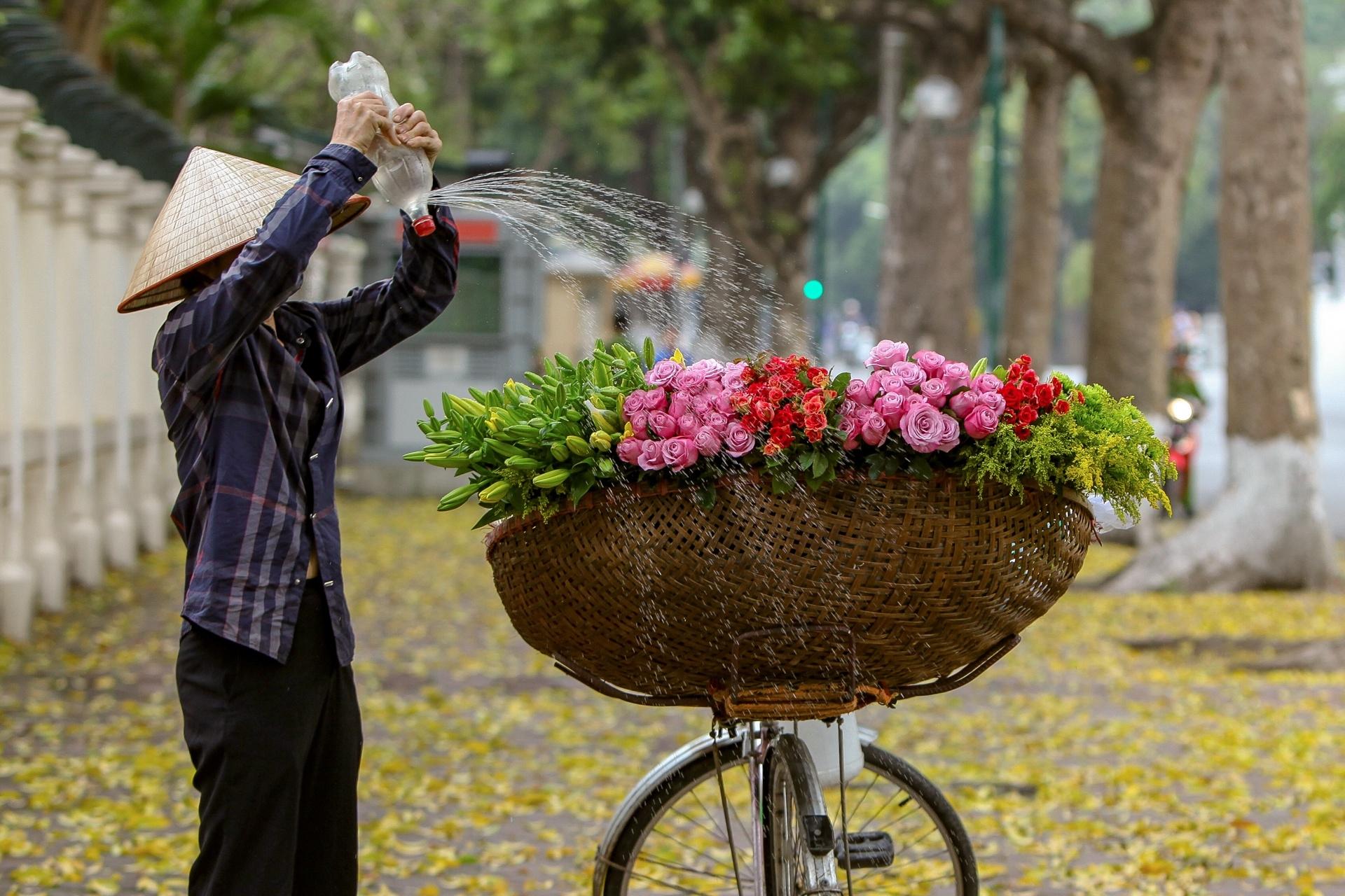 graceful hanoi in autumn days