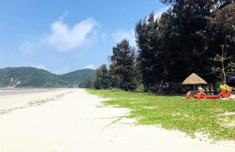 ngoc vung island worth discovering off the beaten track pearl