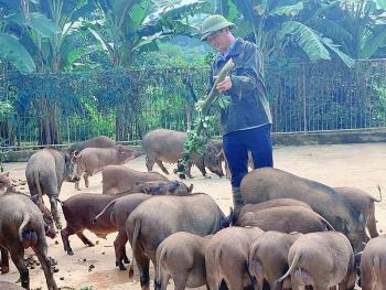three great start ups garners thousands of dollars in vietnam