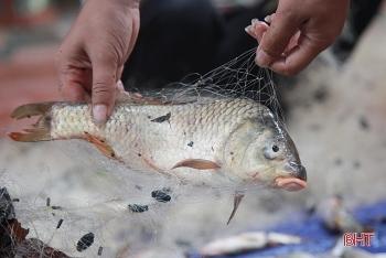 flood season in da nang locals joyfully take to the street to catch fish