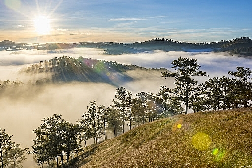 5 must-conquer places for captivating cloud hunting adventure in Da Lat