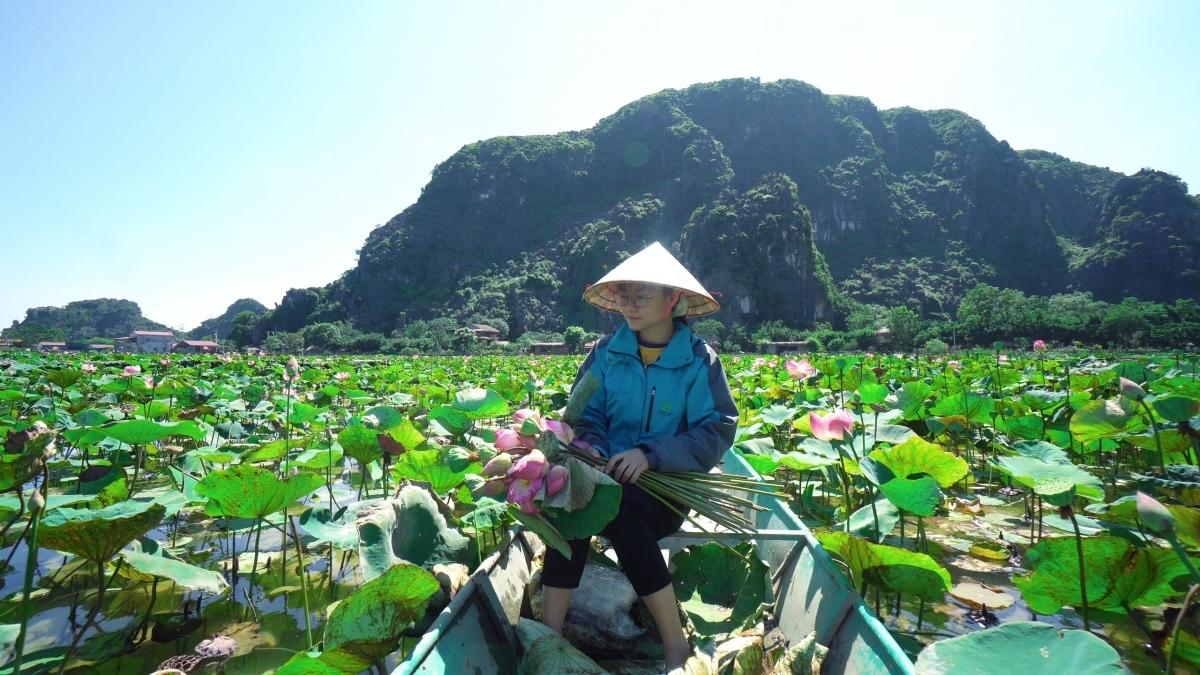 Lotus cuisine in Ninh Binh, a feast for visitors' soul