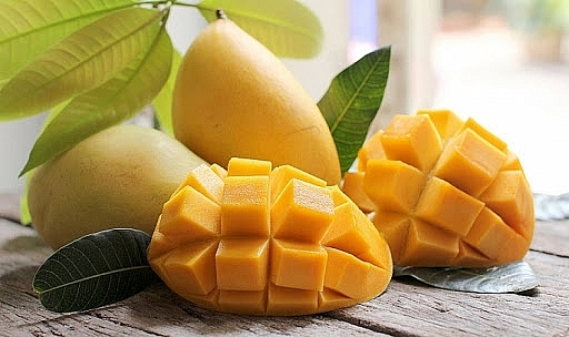 Vietnam's mangoes export volumnes to US doubles
