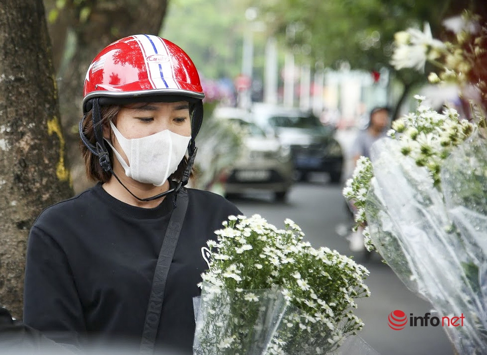 Hanoi turns on romantic mode with white daisy covering almost every street corners