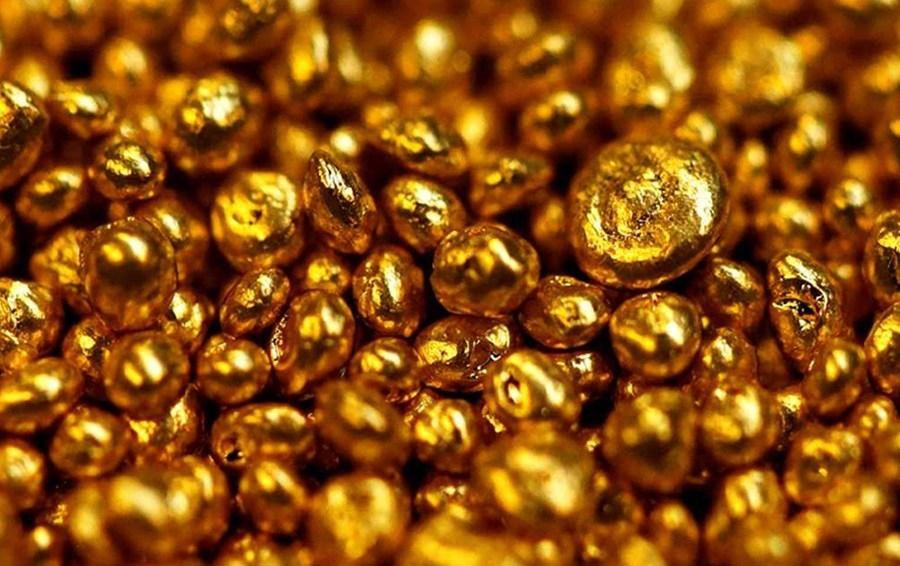 4420 gold