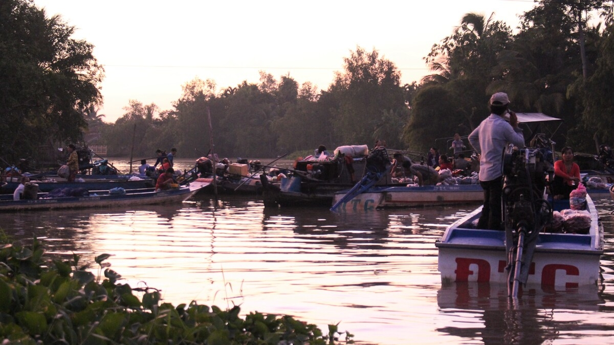 Video: Vibrant dawn at Phong Dien floating market
