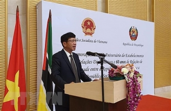 celebration marks 45 years of vietnam mozambique diplomatic ties
