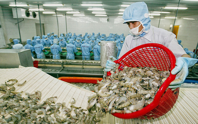 vietnams shrimp exports rise amidst covid 19 pandemic
