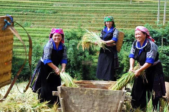 Poverty rate in Viet Nam declines sharply from over 70% to below 6% (Photo: VGP)