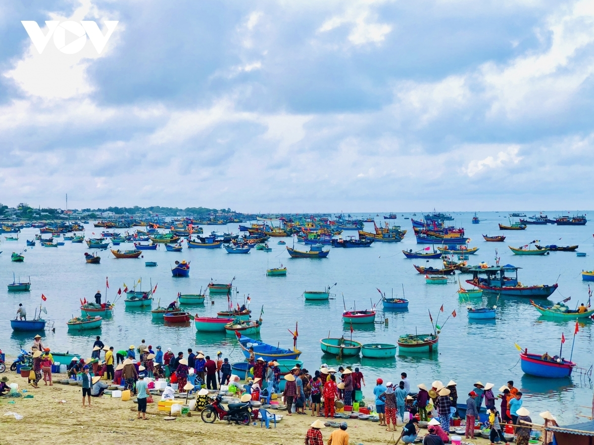 Binh thuan releases new tourism products to increase visitor numbers