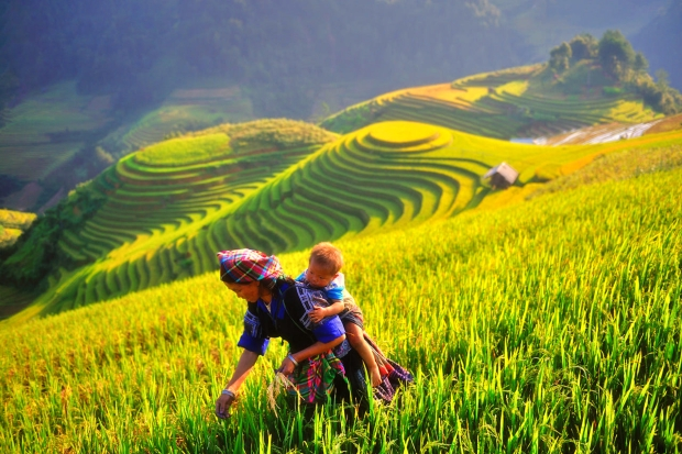 Mu Cang Chai (Yen Bai Province) strives to quickly become a tourist district