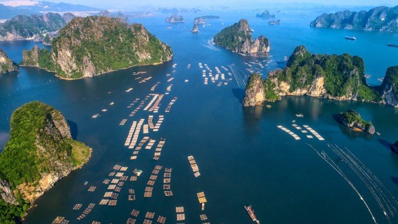 Photo:  Lan Ha Bay Cruise Luxury