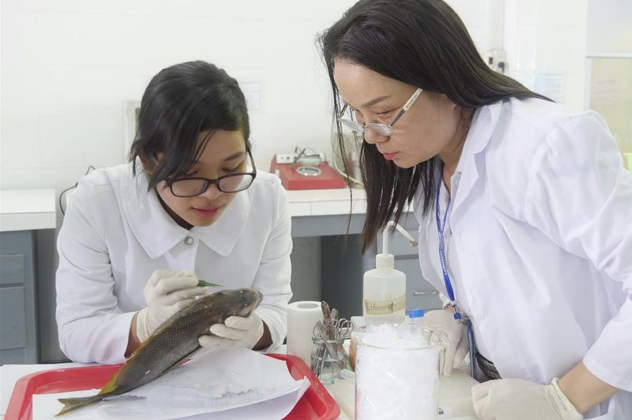 vietnamese scholars receive 3 grants for us scientific research