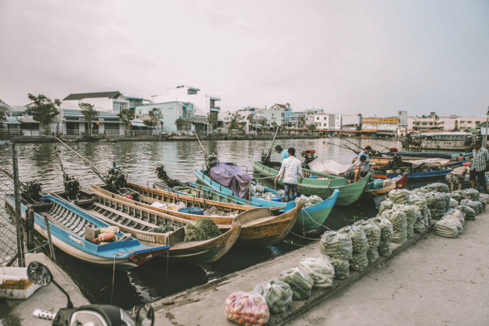 Ca Mau's rustic beauty through young photographer's lenses
