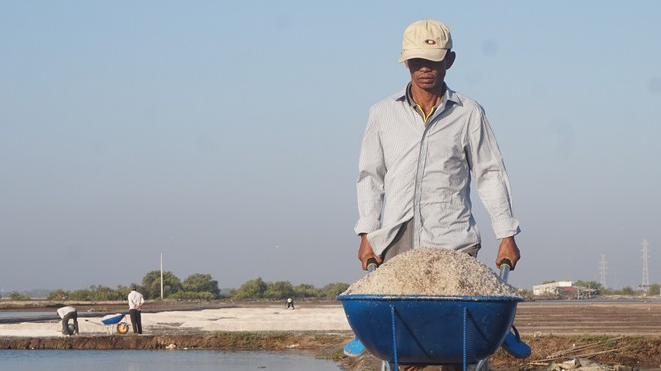 The profession of salt producing in the South of Vietnam